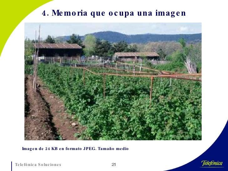 4. Memoria que ocupa una imagen Imagen de 24 KB en formato JPEG. Tamaño medio