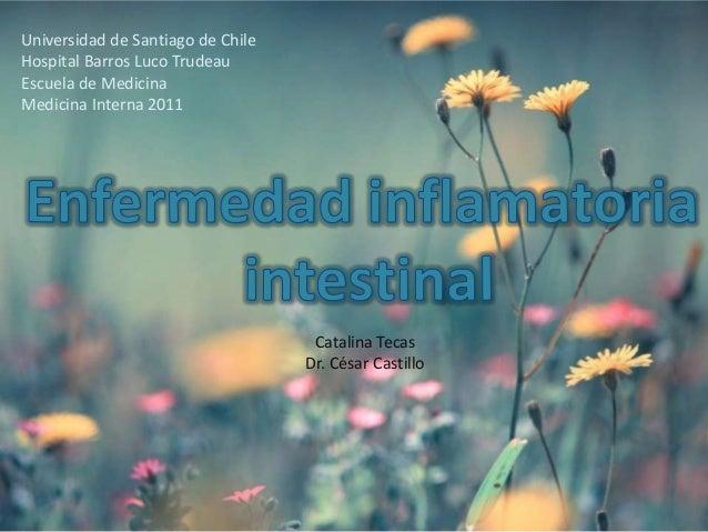 Universidad de Santiago de ChileHospital Barros Luco TrudeauEscuela de MedicinaMedicina Interna 2011                      ...