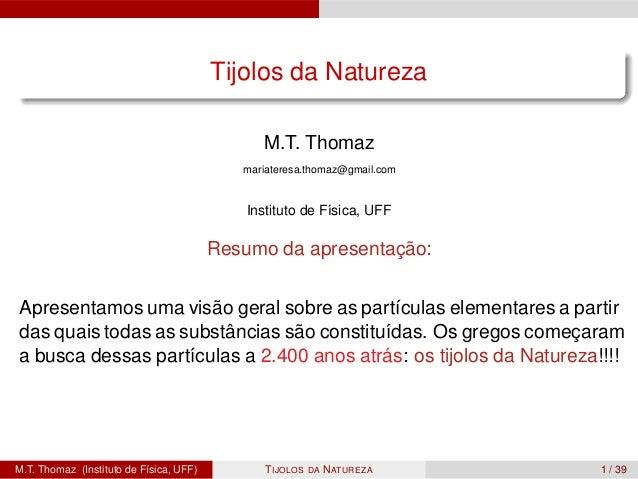 Tijolos da Natureza                                               M.T. Thomaz                                            m...