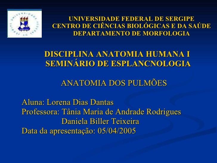 UNIVERSIDADE FEDERAL DE SERGIPE CENTRO DE CIÊNCIAS BIOLÓGICAS E DA SAÚDE DEPARTAMENTO DE MORFOLOGIA <ul><li>DISCIPLINA ANA...
