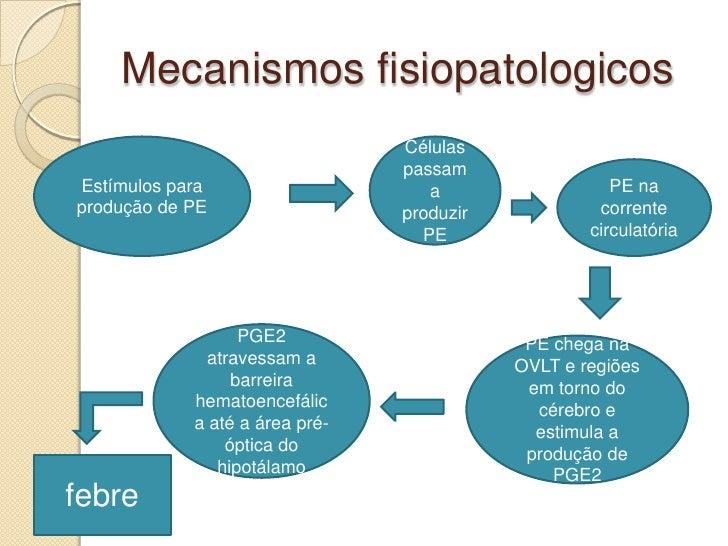 hormonios esteroides e peptideos