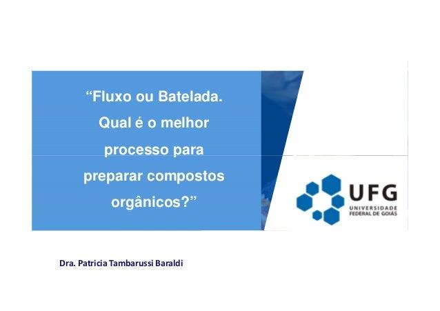 """""""Fluxo ou Batelada.  Qual é o melhor  processo para  preparar compostos  orgânicos?""""  Dra. Patricia Tambarussi Baraldi"""