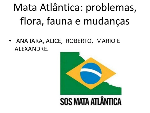 Mata Atlântica: problemas,  flora, fauna e mudanças  • ANA IARA, ALICE, ROBERTO, MARIO E  ALEXANDRE.