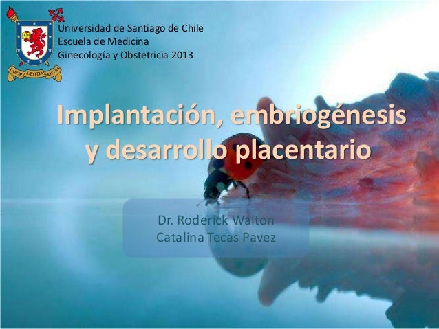 Implantación, embriogénesis y desarrollo placentario Universidad de Santiago de Chile Escuela de Medicina Ginecología y Ob...