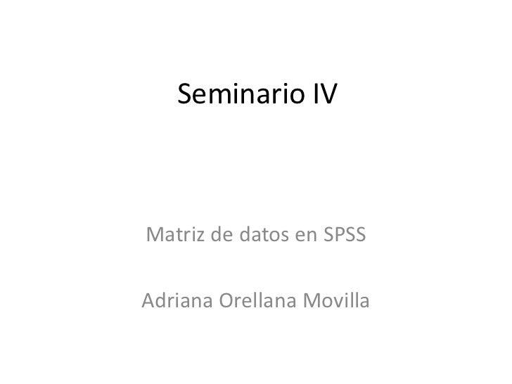 Seminario IVMatriz de datos en SPSSAdriana Orellana Movilla
