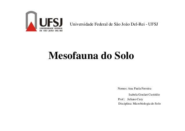 Universidade Federal de São João Del-Rei - UFSJ Mesofauna do Solo Nomes: Ana Paula Ferreira Isabela Goulart Custódio Prof....