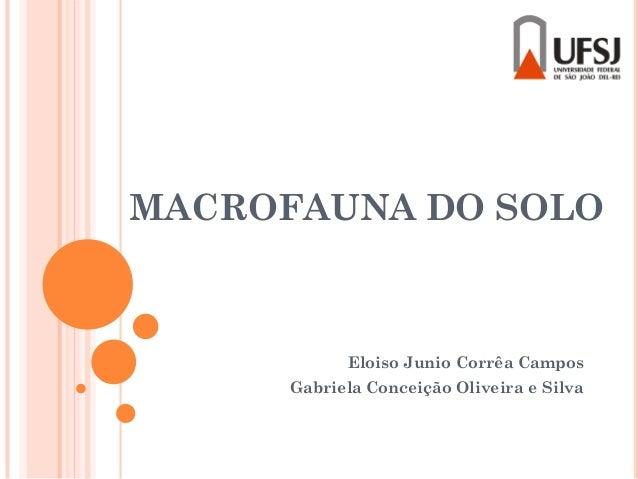MACROFAUNA DO SOLO Eloiso Junio Corrêa Campos Gabriela Conceição Oliveira e Silva