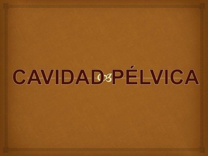 LIMITES DE LA     CAVIDAD PÉLVICA             La cavidad pélvica comunica con la cavidad abdominal.  Tiene los siguiente...