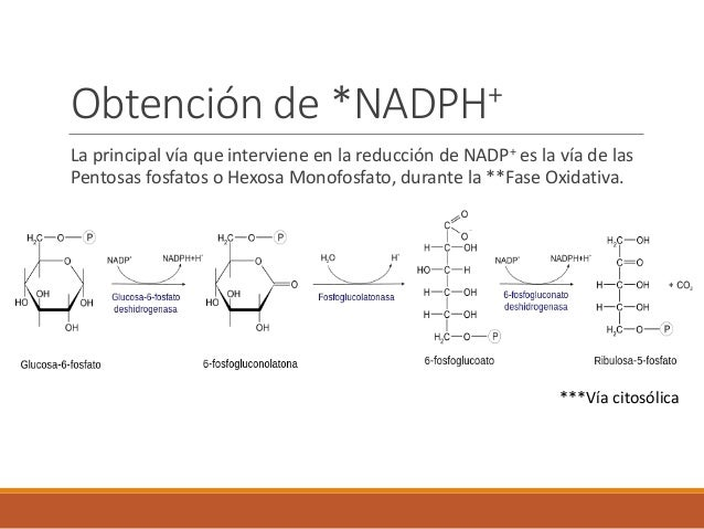 Presentacion de adp con orgia incluida en el seb 2017 - 1 part 2