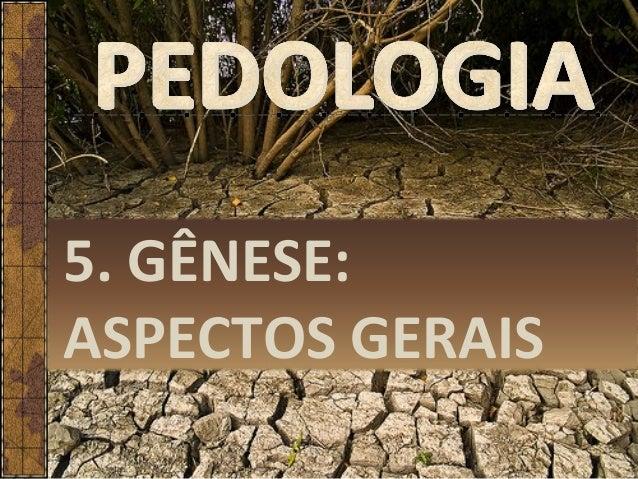5. GÊNESE: ASPECTOS GERAIS