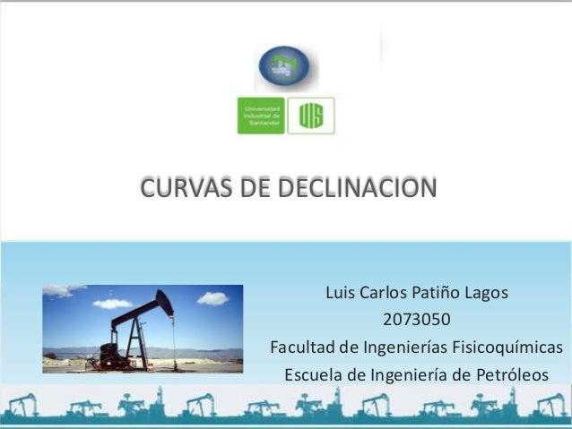 CURVAS DE DECLINACION                Luis Carlos Patiño Lagos                        2073050         Facultad de Ingenierí...