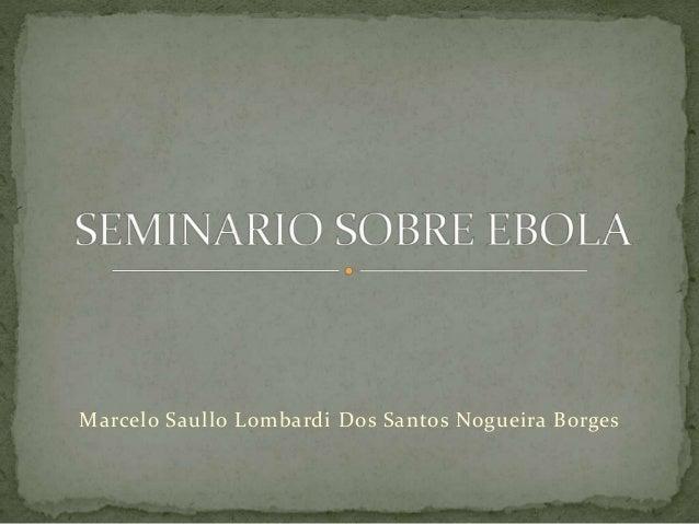 Marcelo Saullo Lombardi Dos Santos Nogueira Borges