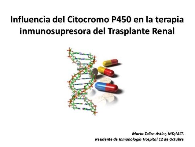 Influencia del Citocromo P450 en la terapia   inmunosupresora del Trasplante Renal                                       M...