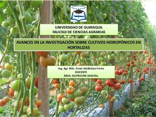 universidad de guayaquil faultad de ciencias agrarias avances en la sobre cultivos hidropnicos en hortaliza