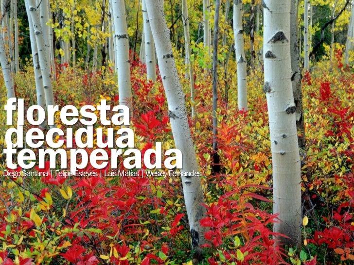 florestadecíduatemperadaDiego Santana | Felipe Esteves | Lais Matias | Wesley Fernandes