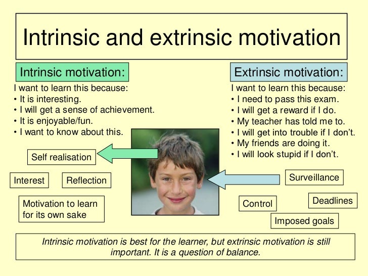 an examination of intrinsic and extrinsic motivation within the classroom Start studying human development: a life-span view 7th about intrinsic and/or extrinsic motivation in intrinsic motivation to learn classroom.