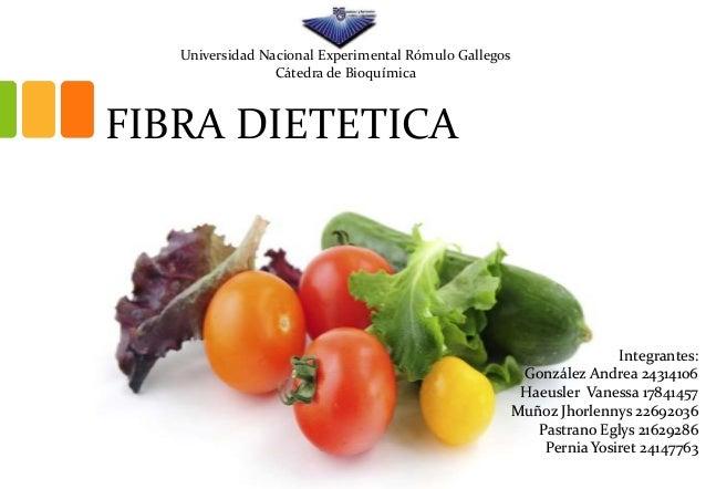 FIBRA DIETETICA Integrantes: González Andrea 24314106 Haeusler Vanessa 17841457 Muñoz Jhorlennys 22692036 Pastrano Eglys 2...