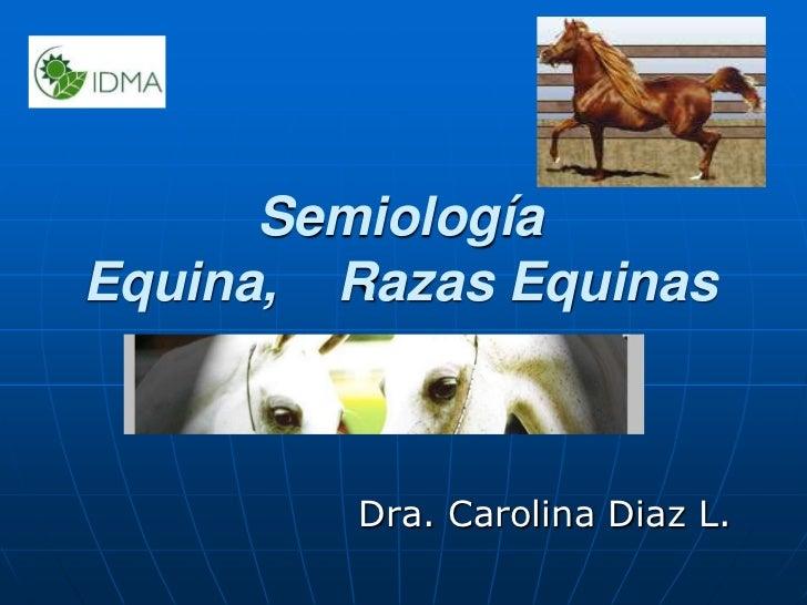 Semiología Equina,    Razas Equinas<br />Dra. Carolina Diaz L.<br />