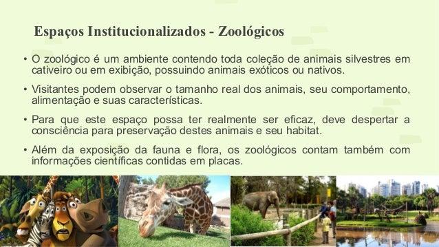 Espaços Institucionalizados - Zoológicos  • O zoológico é um ambiente contendo toda coleção de animais silvestres em  cati...