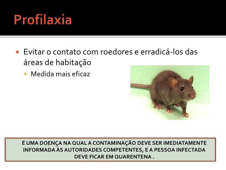 Formas Clínicas<br />PESTE BUBÔNICA <br />PESTE PNEUMÔNICA <br />Tosse com expectoração sanguinolenta, purulenta e infecci...