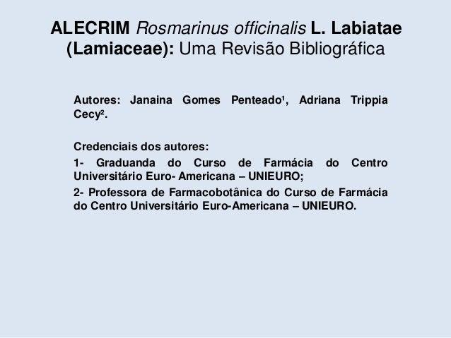 Seminário Artigo - ALECRIM Slide 2
