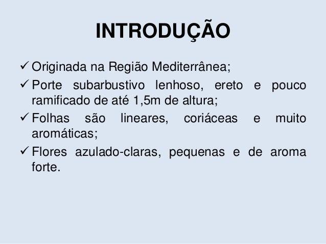 Seminário Artigo - ALECRIM Slide 3