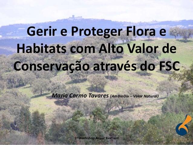 Maria Carmo Tavares (AmBioDiv – Valor Natural) Gerir e Proteger Flora e Habitats com Alto Valor de Conservação através do ...