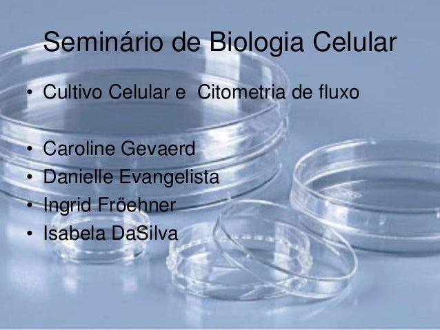 Seminário de Biologia Celular• Cultivo Celular e Citometria de fluxo•   Caroline Gevaerd•   Danielle Evangelista•   Ingrid...