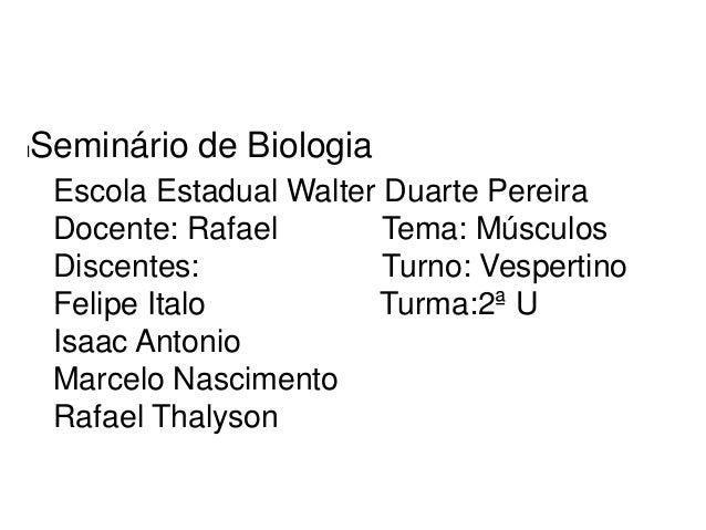 l  Seminário de Biologia Escola Estadual Walter Duarte Pereira Docente: Rafael Tema: Músculos Discentes: Turno: Vespertino...