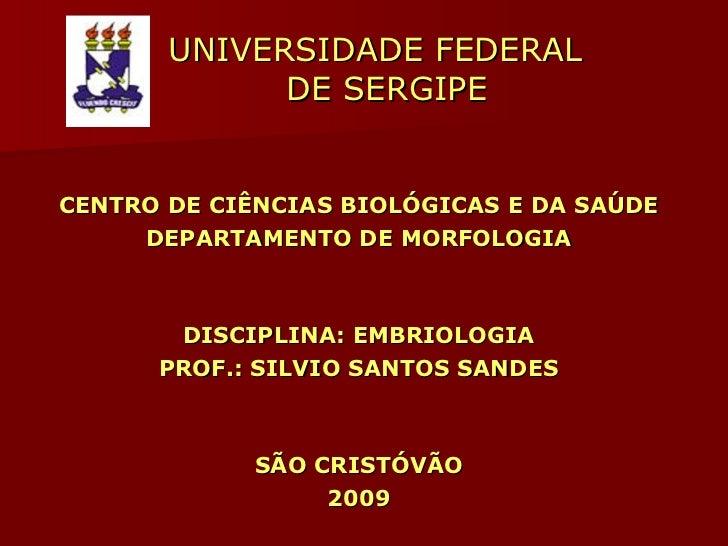 UNIVERSIDADE FEDERAL    DE SERGIPE <ul><li>CENTRO DE CIÊNCIAS BIOLÓGICAS E DA SAÚDE </li></ul><ul><li>DEPARTAMENTO DE MORF...