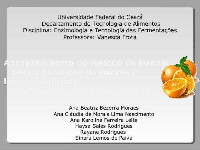 Aproveitamento do resíduo de laranja para a produção de enzimas lignocelulolíticas por Pleurotus ostreatus (Jack:Fr) Unive...