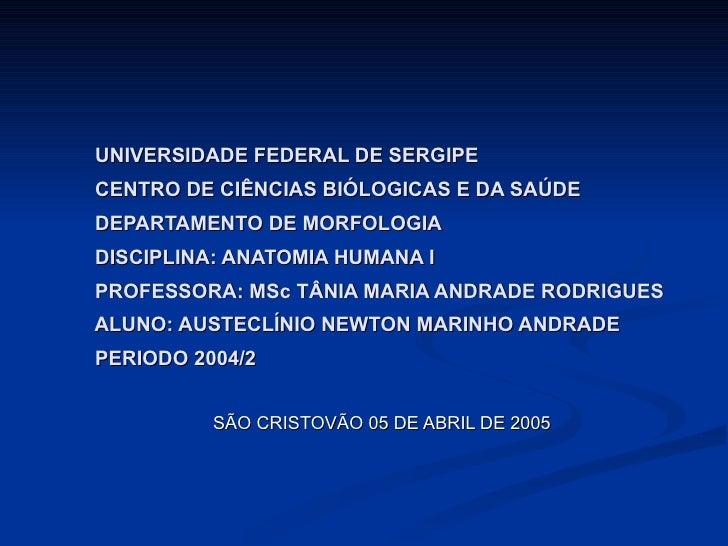 UNIVERSIDADE FEDERAL DE SERGIPE   CENTRO DE CIÊNCIAS BIÓLOGICAS E DA SAÚDE   DEPARTAMENTO DE MORFOLOGIA   DISCIPLINA: ANAT...