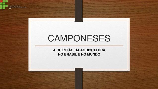 CAMPONESES A QUESTÃO DA AGRICULTURA NO BRASIL E NO MUNDO