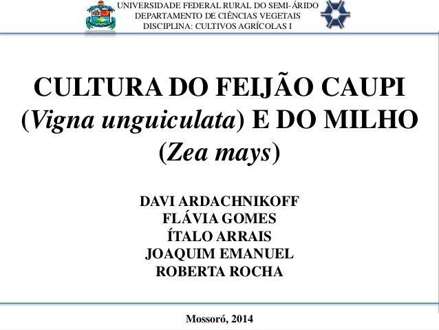 CULTURA DO FEIJÃO CAUPI (Vigna unguiculata) E DO MILHO (Zea mays) DAVI ARDACHNIKOFF FLÁVIA GOMES ÍTALO ARRAIS JOAQUIM EMAN...