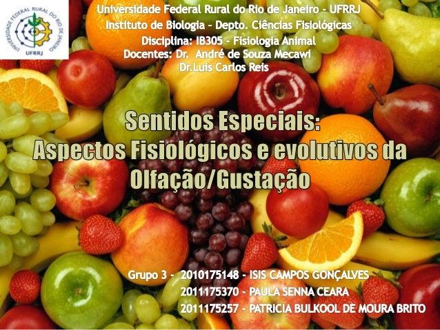 A. Sensibilidade gustativa:  Vias; B. Sensibilidade olfativa:  Codificação da informação no epitélio olfativo  Vias olf...