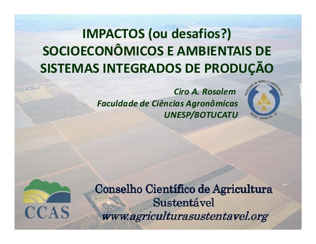 IMPACTOS (ou desafios?) SOCIOECONÔMICOS E AMBIENTAIS DE SISTEMAS INTEGRADOS DE PRODUÇÃO Ciro A. Rosolem Faculdade de Ciênc...