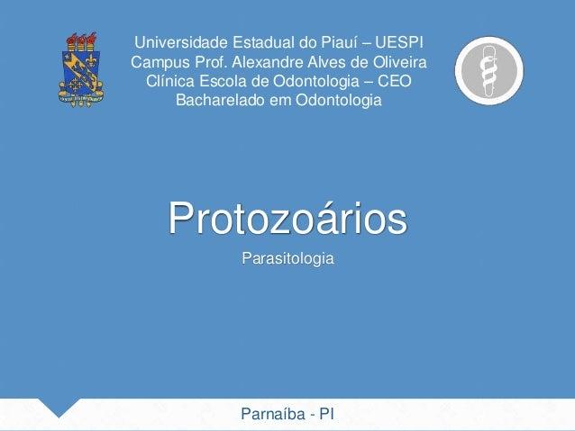 Universidade Estadual do Piauí – UESPI Campus Prof. Alexandre Alves de Oliveira Clínica Escola de Odontologia – CEO Bachar...