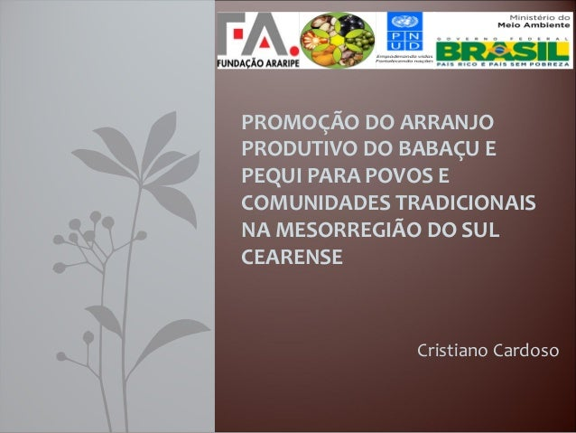 Cristiano Cardoso PROMOÇÃO DO ARRANJO PRODUTIVO DO BABAÇU E PEQUI PARA POVOS E COMUNIDADES TRADICIONAIS NA MESORREGIÃO DO ...