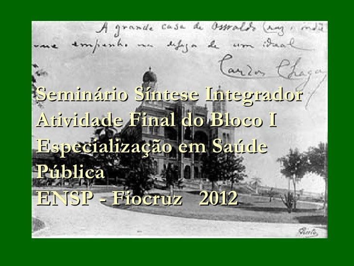 Seminário Síntese IntegradorAtividade Final do Bloco IEspecialização em SaúdePúblicaENSP - Fiocruz 2012