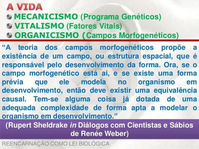 Teoria dos campos morfogenéticos