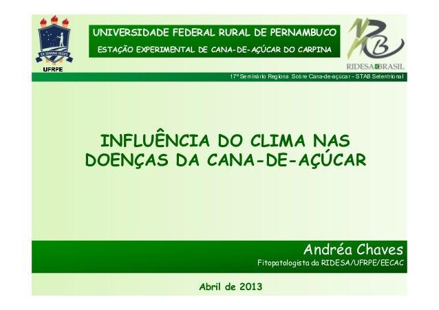17º Seminário Regional Sobre Cana-de-açúcar – STAB SetentrionalUFRPEUFRPEUFRPEUFRPEUNIVERSIDADE FEDERAL RURAL DE PERNAMBUC...