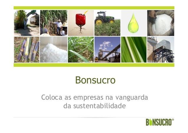 BonsucroColoca as empresas na vanguardada sustentabilidade