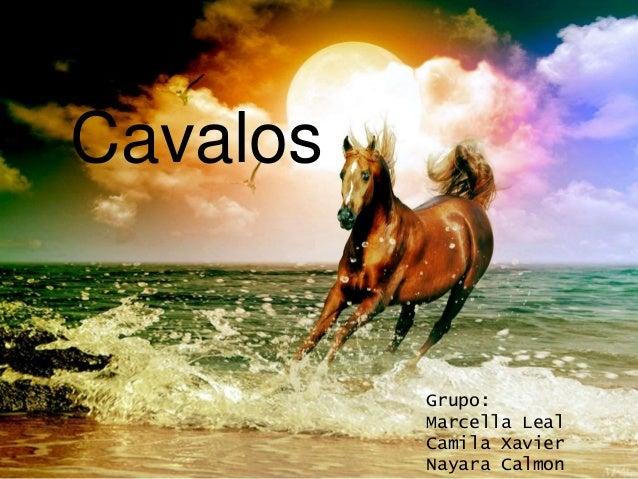 Cavalos Grupo: Marcella Leal Camila Xavier Nayara Calmon