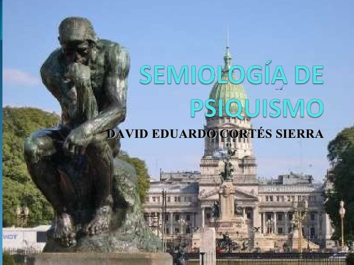 DAVID EDUARDO CORTÉS SIERRA