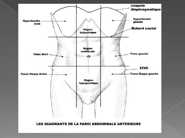 Maladie inflammatoire de l 39 intestin mii for Douleur au genou gauche interieur