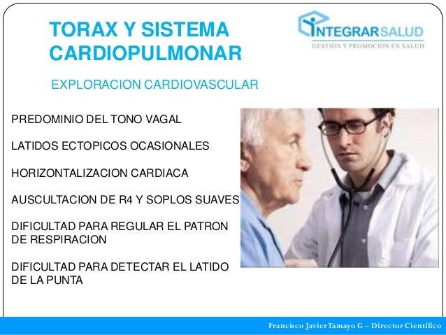 TORAX Y SISTEMA     CARDIOPULMONAR      EXPLORACION CARDIOVASCULARPREDOMINIO DEL TONO VAGALLATIDOS ECTOPICOS OCASIONALESHO...