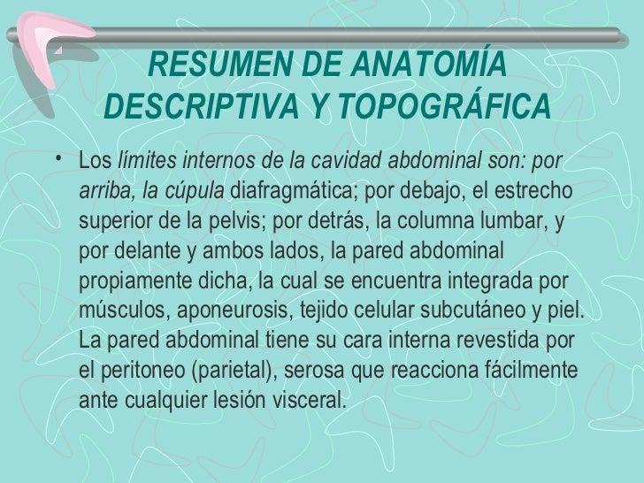Semiologia abdomen Slide 2