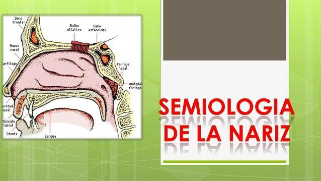 Examen Físico Segmentario Cavidad oral:  Labios: simetría , color ,aspecto (parálisis facial , cianosis, anemia , fiebre ...