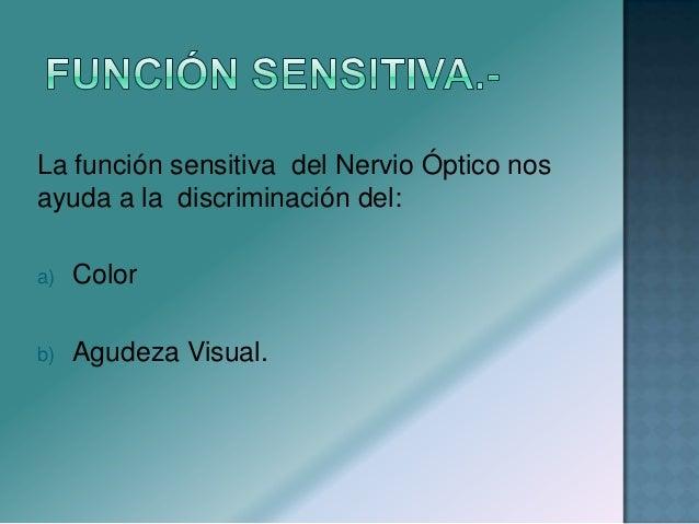 Defectos en los campos visuales:  Hemianopsia- ceguera en la mitad de uno o de ambos campos visuales.  Cuadrinopsia- ceg...