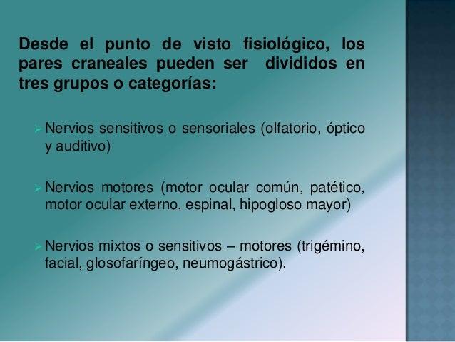 Desde el punto de visto fisiológico, los pares craneales pueden ser divididos en tres grupos o categorías:  Nervios sensi...